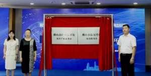 首批!瑝玛卫浴被录入佛山市重点知识产权保护名录企业调节蝶阀